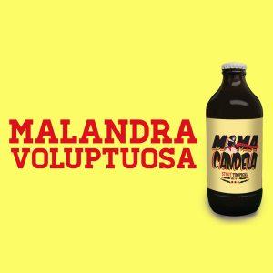 mamacandela-cerveza-stout-treintaycinco
